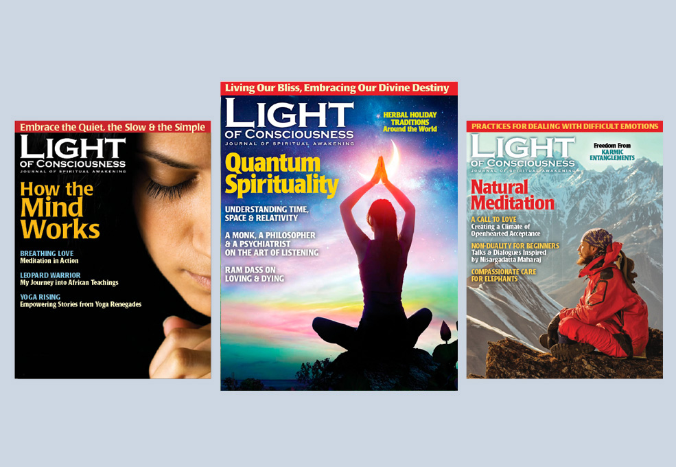 Buy Back Issues of Light of Consciousness Magazine