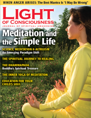 VOL 20 #4 Meditation and the Simple Life